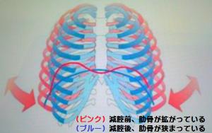 産後の下半身太りが解消する減腔の効果