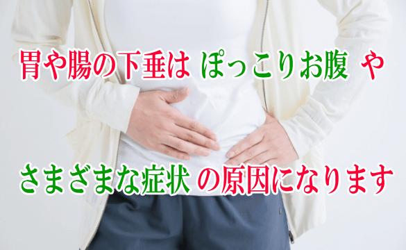 胃や腸の下垂はぽっこりお腹やさまざまな症状の原因になります